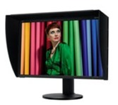 Spectraview 3090 monitor